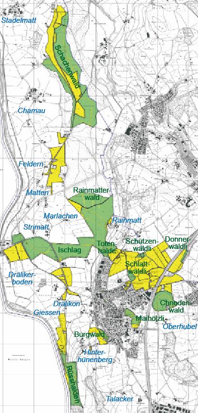Die grüne Fläche zeigt den Wald der Korporation Hünenberg. Karte: GIS-Fachstelle des  Kantons Zug, 2007;  Beschriftung c2u GmbH